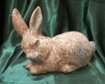 Rabbit, Iris